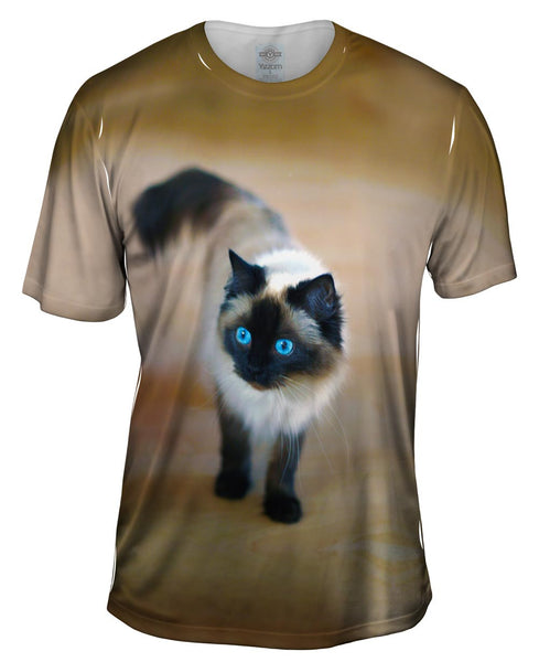 Spooked Kitty Cat Mens T-Shirt