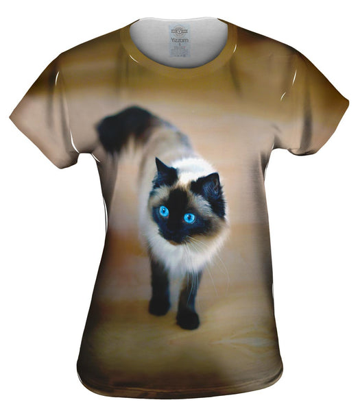 Spooked Kitty Cat Womens Top