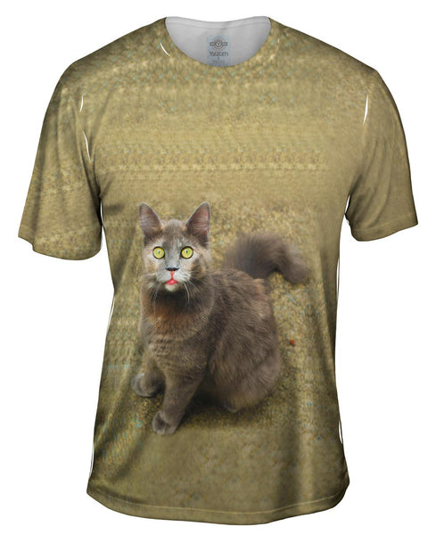 Wow Brown Cat Mens T-Shirt