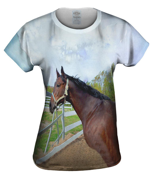 Thoughtful Stable Horse Womens Top