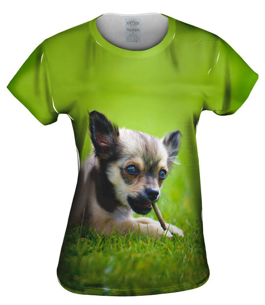 Chihuaha Loves To Chew Womens Top