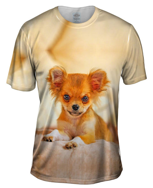 Furry Puppy Chihuahua Mens T-Shirt