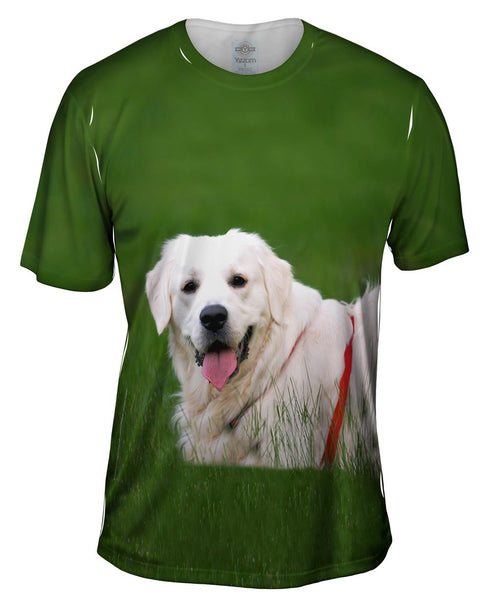 White Lab On Grass Mens T-Shirt
