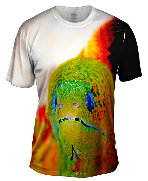 Moray Eel Peeks Underwater Mens T-Shirt