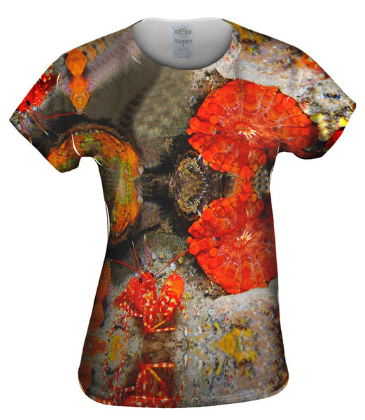 Red Shrimp At The Ready Underwater Womens Top