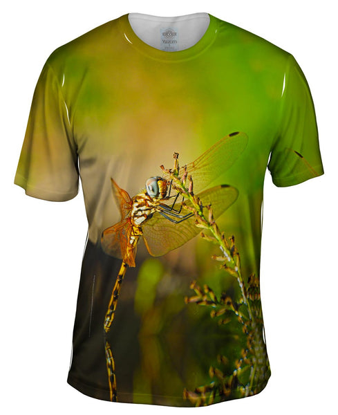 Dragon Fly At Rest Mens T-Shirt