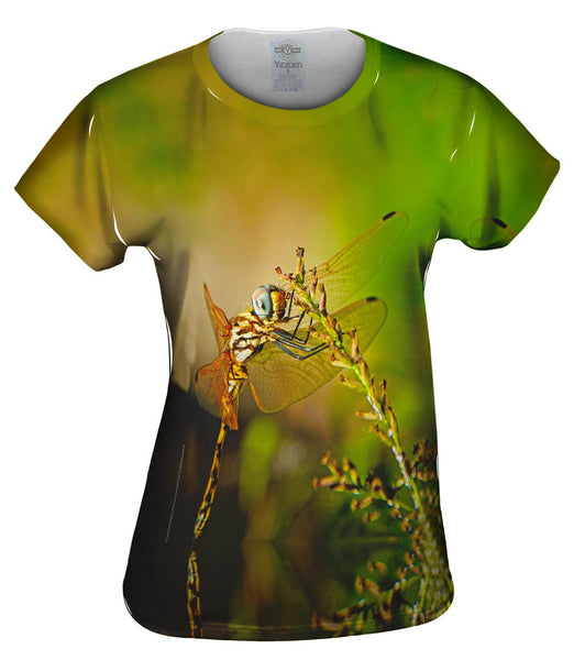 Dragon Fly At Rest Womens Top