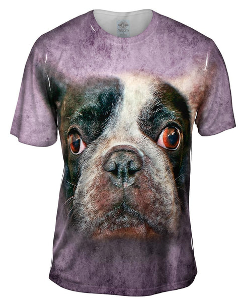 Bug Eyes Dog Face Mens T-Shirt