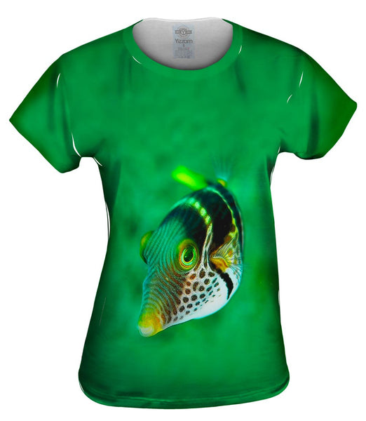 Valentini Fish Stare Underwater Womens Top