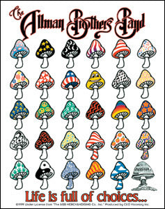 Allman Brothers Band Vinyl Sticker Life Is Full Of Choices