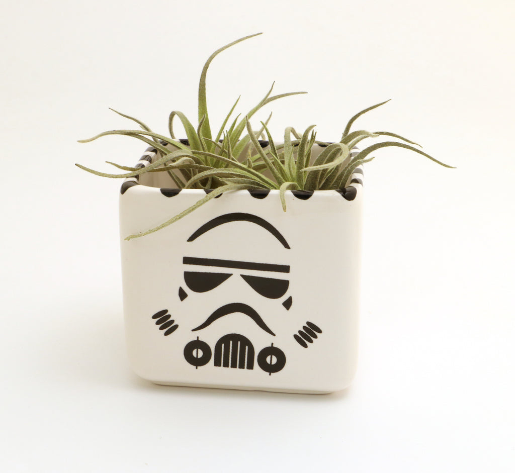 Storm Trooper mini planter, succulent planter