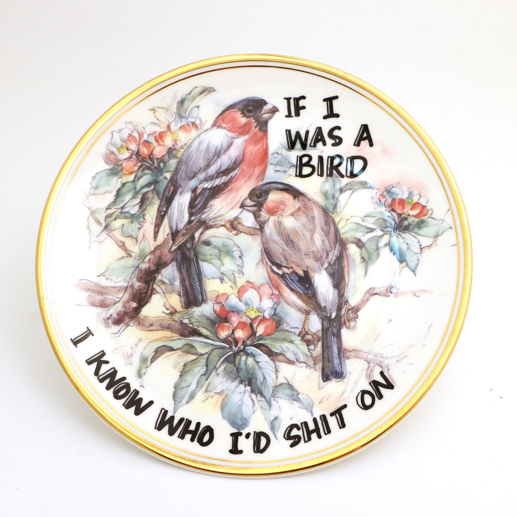 If I was a bird, Dirty Dishes collection