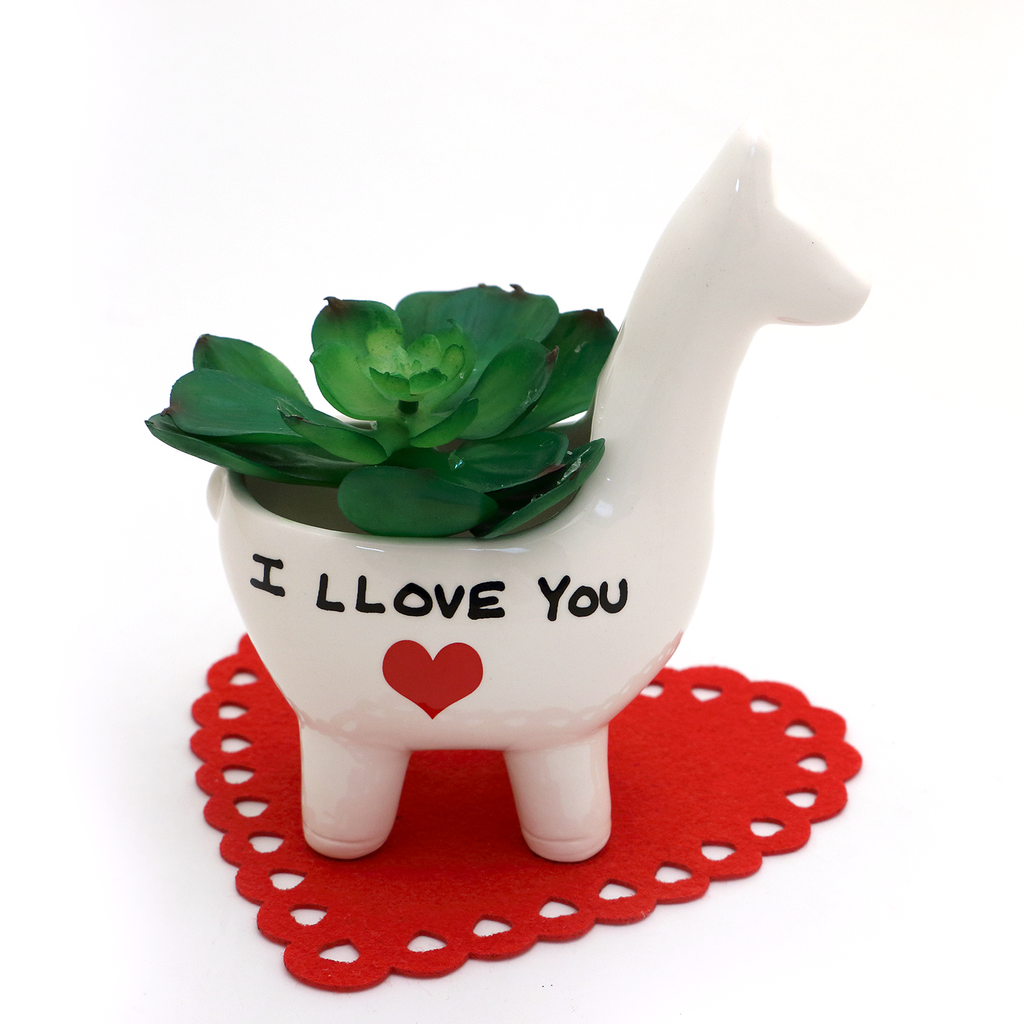 I LLove you LLama Planter indoor planter, Valentines gift