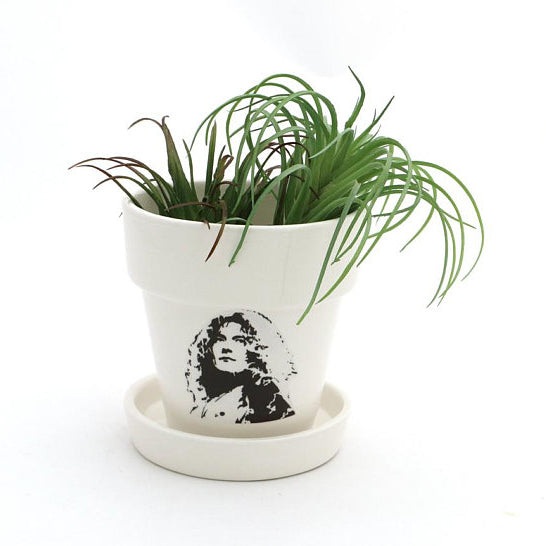 What kind of plant? A ROBERT PLANT! When it comes to puns, all that glitters is gold- great gift fo
