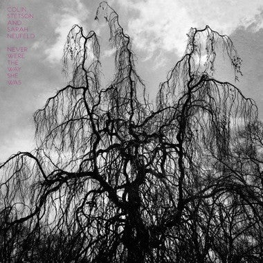 "Stetson, Colin and Sarah Neufeld "" Never Were The Way She Was"" LP - Dead Tank Records"