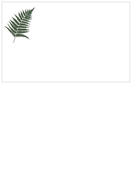 Fern giftcards (x10)