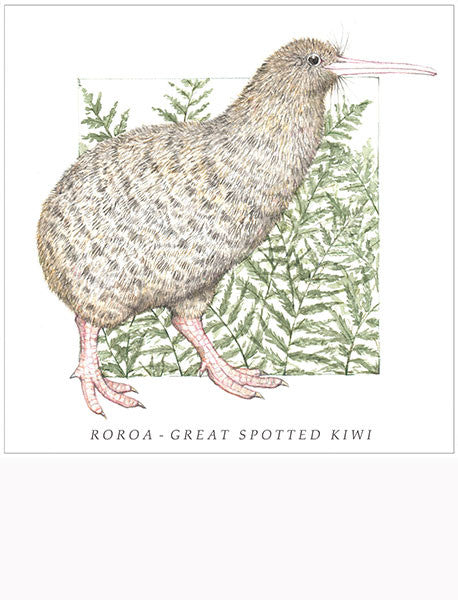Birds of the Doubtful Valley - Roroa