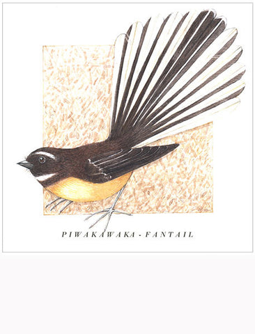 Birds of the Doubtful Valley - Fantail