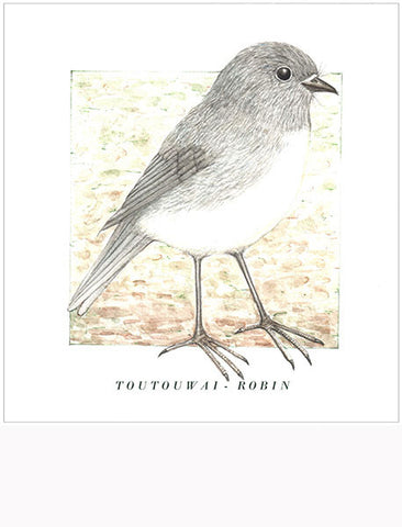 Birds of the Doubtful Valley - Robin