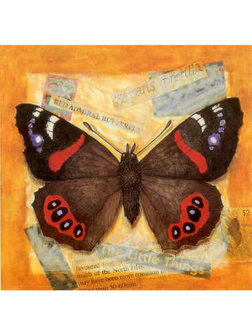 Red Admiral Collage Card