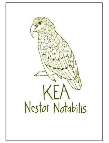 Tea Towel - Kea