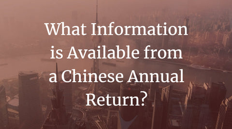 What Information is Available from a Chinese Annual Return?