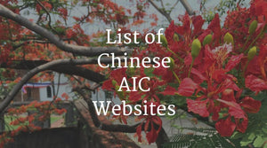 Chinese AIC Websites