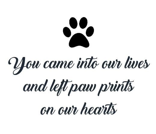 Sympathy Animal Quote Canlde