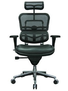 Eurotech Ergohuman Leather Seat and High Back Mesh Chair with Headrest LEM4ERG