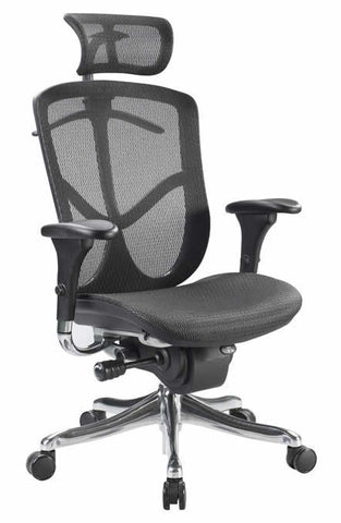 Eurotech Fuzion Luxury High Back Mesh Office Chair FUZ9LX-HI