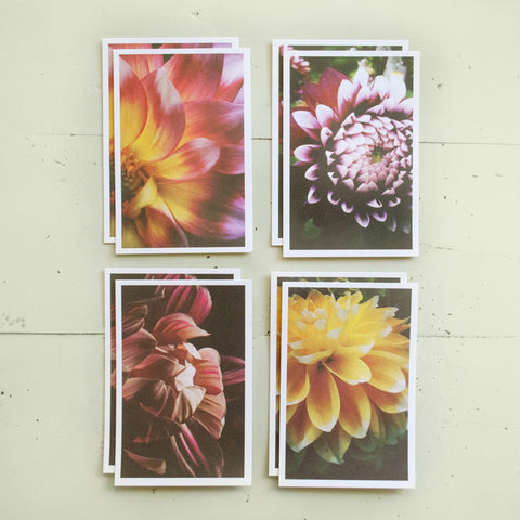 BLOOM: BOXED SET OF 8 CARDS