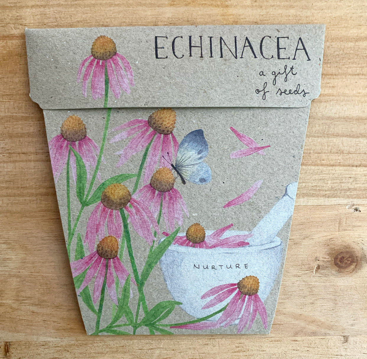 Echinacea Gift of Seed Card