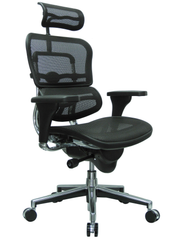 Eurotech Mesh Ergohuman High Back Swivel Chair Black Mesh