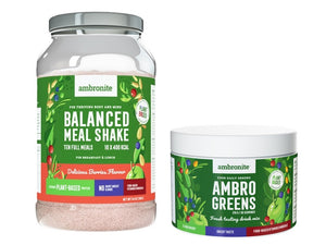 Balanced Meal Shake Berries and AmbroGreens