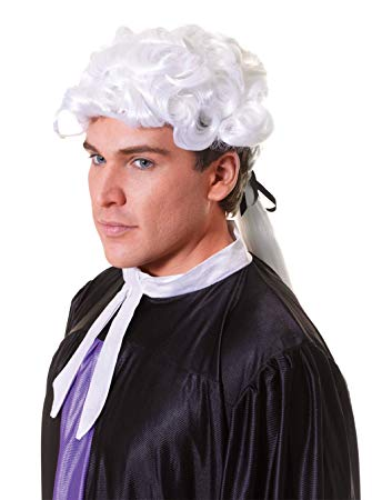 White  Court Wig  Mans  18th Century  Colonial Man  Panto budget