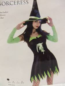 Sexy Sorceress ~ Green and Black ~ size 20 - 22 ~ Halloween costume