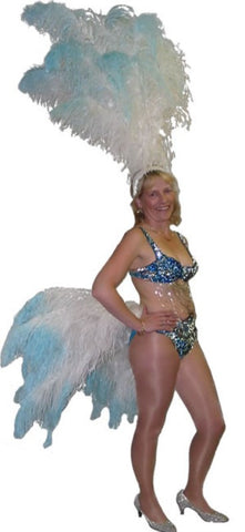 Professional Showgirl costume ~ Choo Choo ~ Deluxe fancy dress ~ Hire ~ Size 8