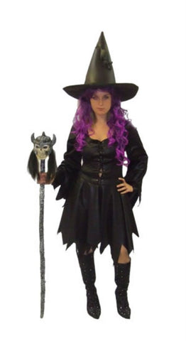 Witch fancy dress ~ Wet Look Hire ~ Size 12 - 14 ~ Halloween