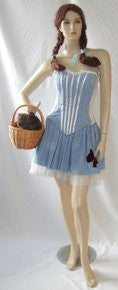 Dorothy Fancy Dress ~ Sizes 8 and 12 ~ Oz ~ Hire