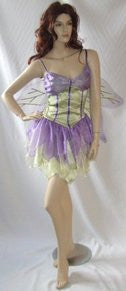 Wisteria Fairy Costume ~ Hire ~ Sizes 8 - 10 - 12 - 14