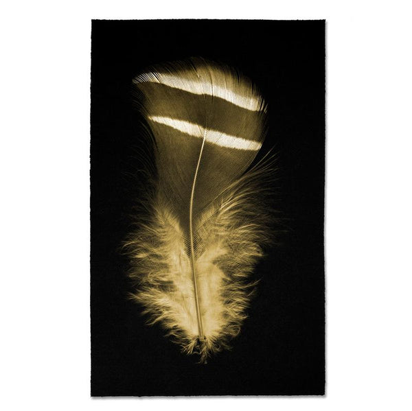 Feather #15 Kozo Noire Print