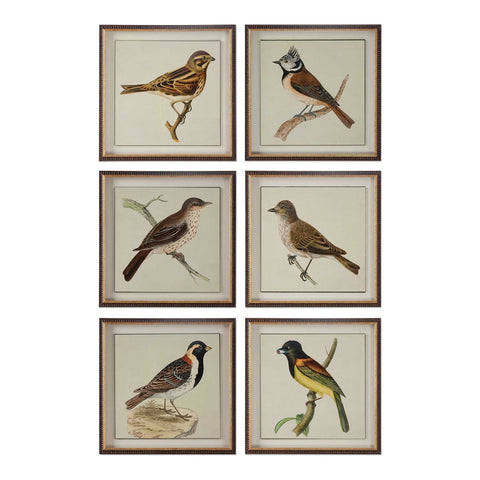 Spring Birds Set of 6