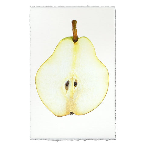 Sliced Pear Vintage Print