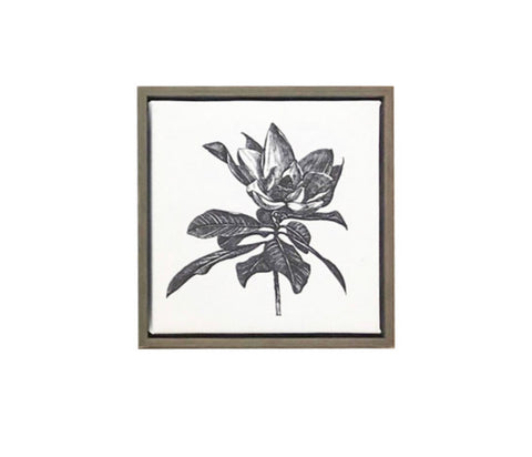 RB Magnolia Canvas Print