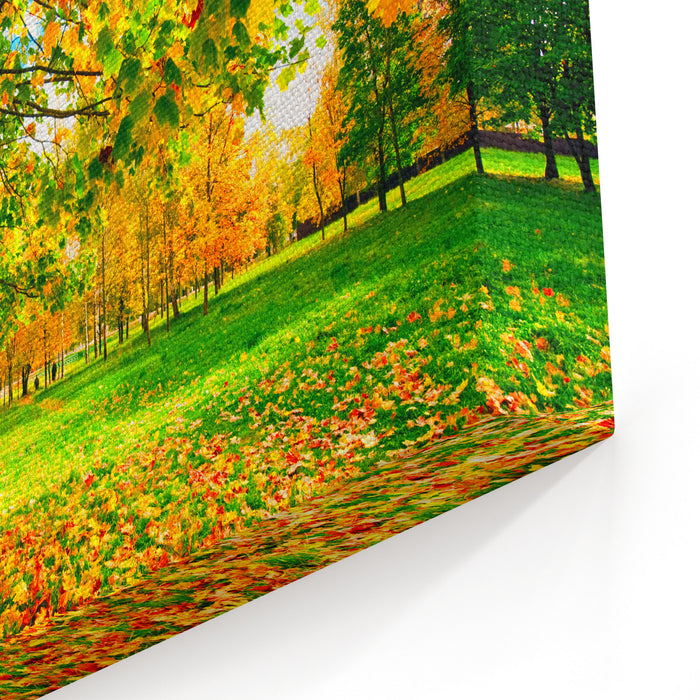 Autumn Landscape With Colourful Maple Tree Canvas Wall Art Print
