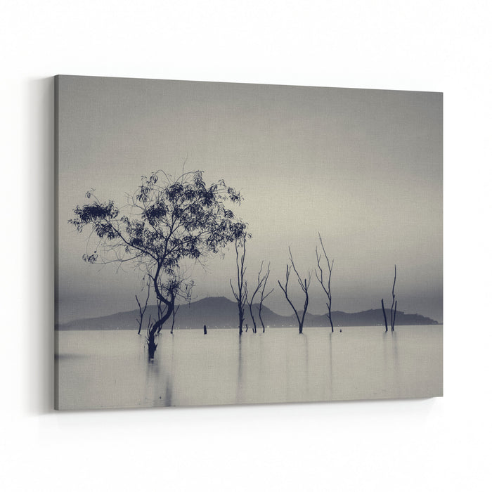 Silhouette Of The Perennial Trees Died In The Water At The Reservoir ,long Exposure Sunset In Thailand,Black And White Color,Blue Mono Tone Canvas Wall Art Print
