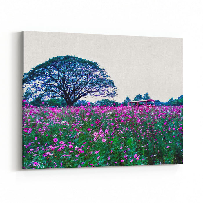 View Of Cosmos Flower Field And Big Tree, Nature Landscape Canvas Wall Art Print