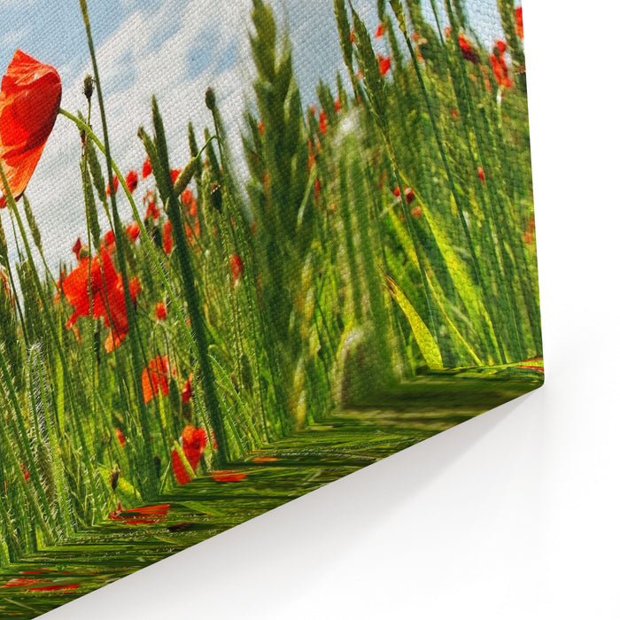 Poppies On The Cereal Field In A Wind Time Canvas Wall Art Print
