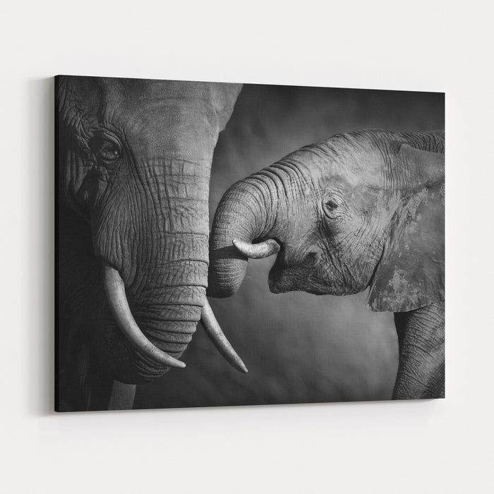Elephants Showing Affection Artistic Processing Canvas Wall Art Print