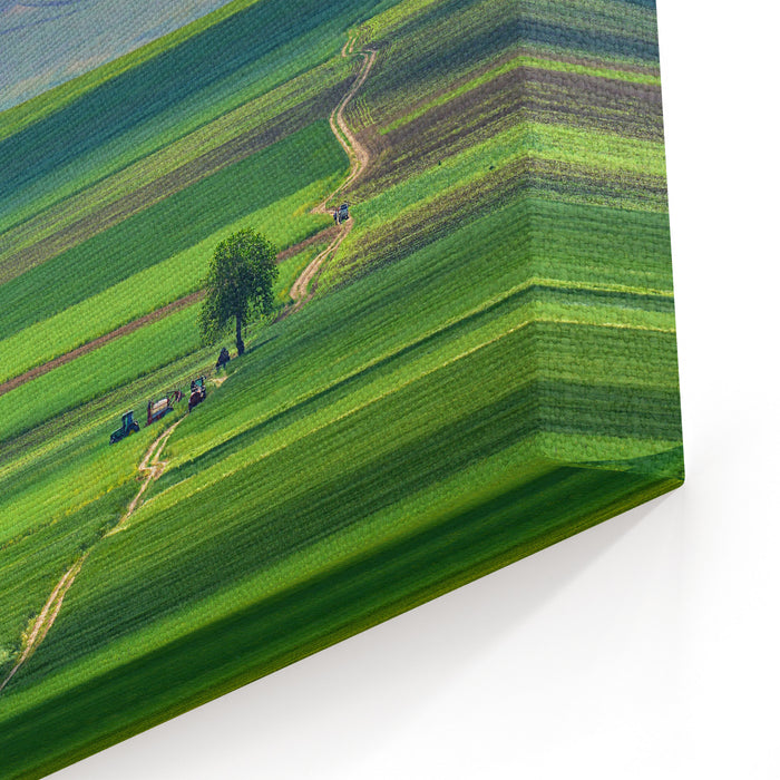 Agriculture Landscape In Macin Mountains Of Dobrogea, Romania Canvas Wall Art Print